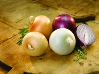 Onions' Seasons, Colors and Flavors