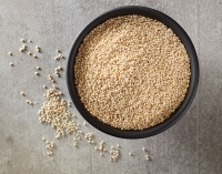 Introducing Domestic White Quinoa